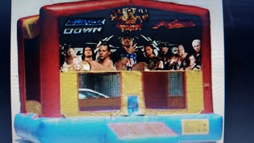 WWE 13x13 $160