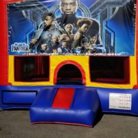 Black Panther Bouncer  $160 13x13  $175 15x15