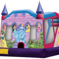 Princess Combo $275 dry  $350 wet  L18 x W15 x H14
